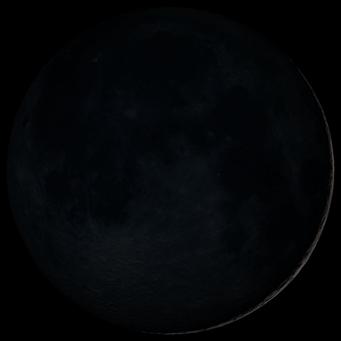 Luna Nueva Mes 8º
